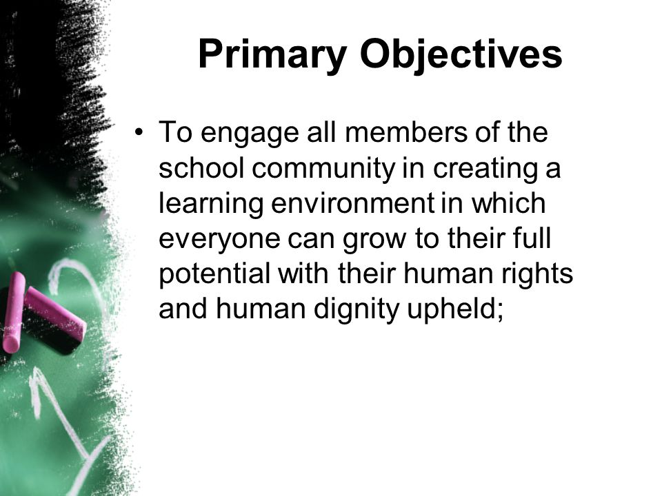 Primary Objectives To engage all members of the school community in creating a learning environment in which everyone can grow to their full potential with their human rights and human dignity upheld;