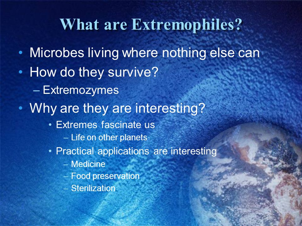 What are Extremophiles.Microbes living where nothing else can How do they survive.