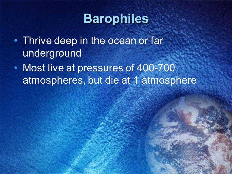 Barophiles Thrive deep in the ocean or far underground Most live at pressures of 400-700 atmospheres, but die at 1 atmosphere