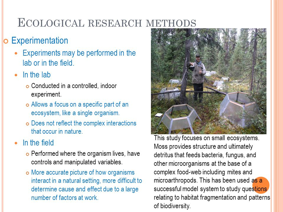 E COLOGICAL RESEARCH METHODS Experimentation Experiments may be performed in the lab or in the field.