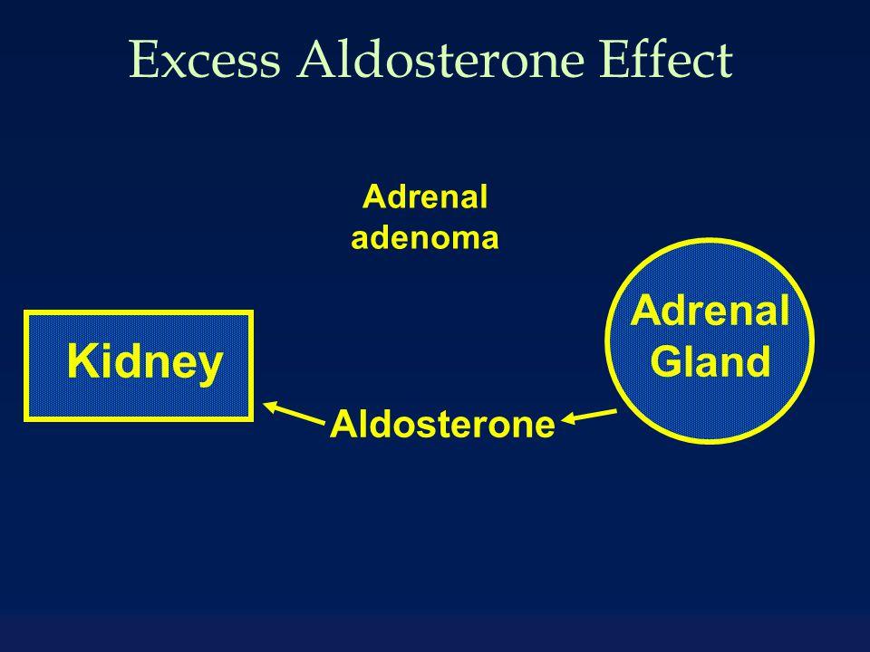 Excess Aldosterone Effect Adrenal Gland Kidney Aldosterone Adrenal adenoma