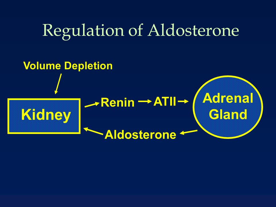 Case One Diagnosis u Excess aldosterone effect u Absence of aldosterone effect u Physiologic aldosterone overproduction Voting 85% 10% 5%