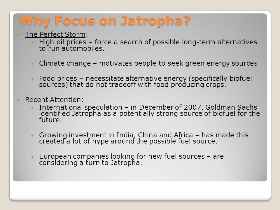Why Focus on Jatropha? The Perfect Storm: High oil prices – force a search of possible long-term alternatives to run automobiles. Climate change – mot