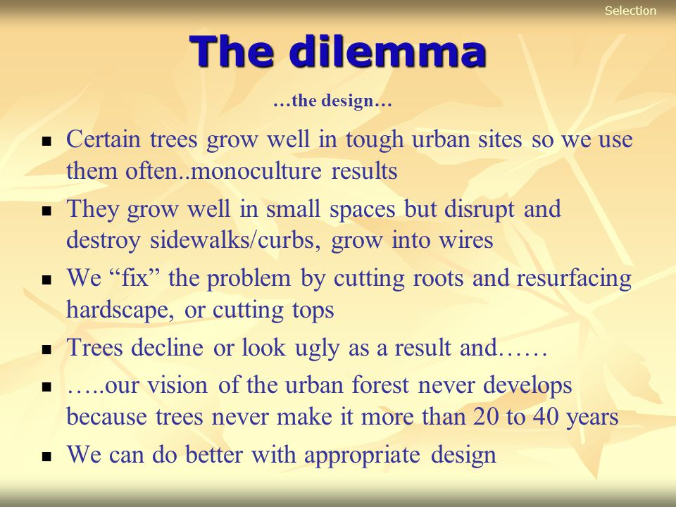 The dilemma Certain trees grow well in tough urban sites so we use them often..monoculture results They grow well in small spaces but disrupt and dest