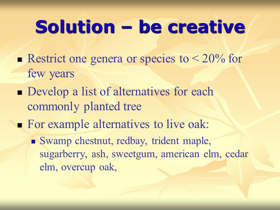 Solution – be creative Restrict one genera or species to < 20% for few years Develop a list of alternatives for each commonly planted tree For example