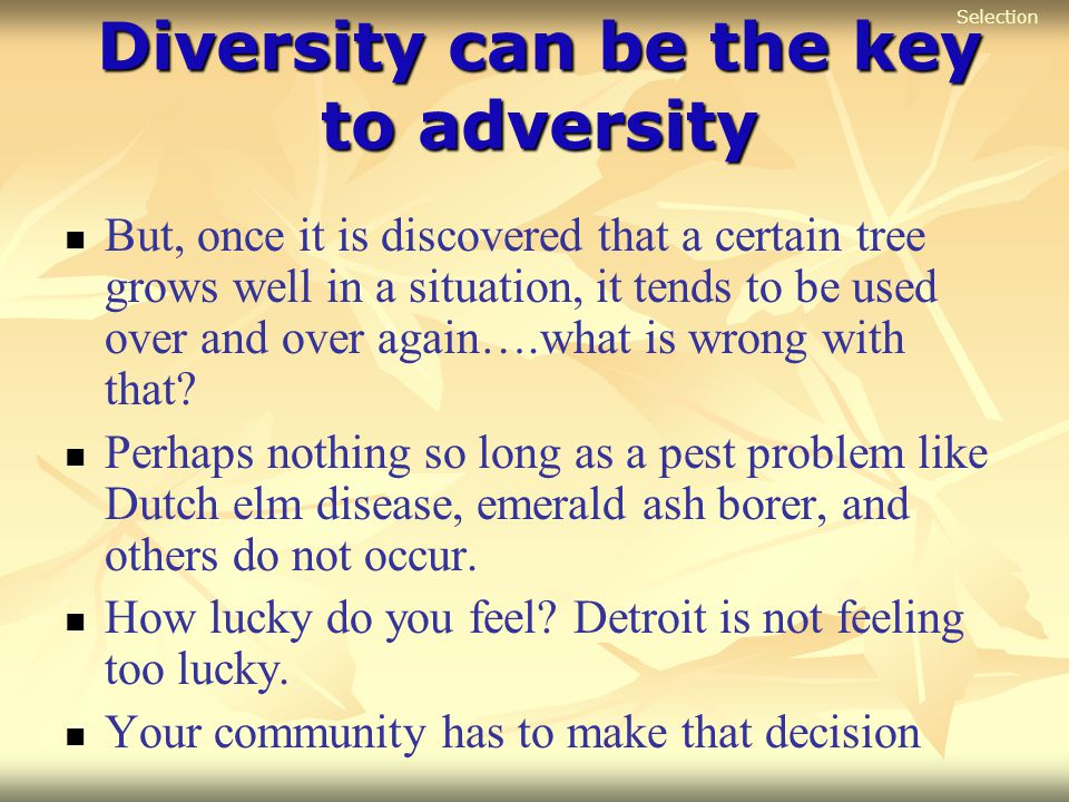 Diversity can be the key to adversity But, once it is discovered that a certain tree grows well in a situation, it tends to be used over and over agai