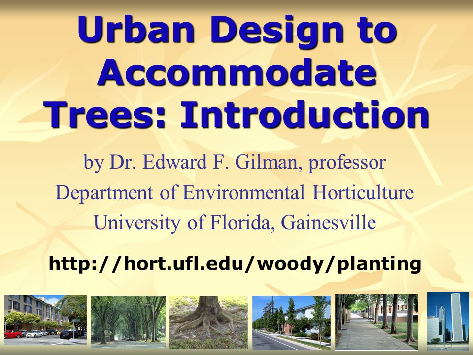 Urban Design to Accommodate Trees: Introduction by Dr. Edward F. Gilman, professor Department of Environmental Horticulture University of Florida, Gai