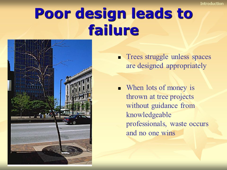 Good design leads to success Trees thrive when good designs are executed properly Healthy trees increase property value, intercept air pollutants, buffer temperatures, reduce wind speed, cool the city, reduce runoff from storms, encourage people to visit and spend money at shops, and create a more inviting community Introduction