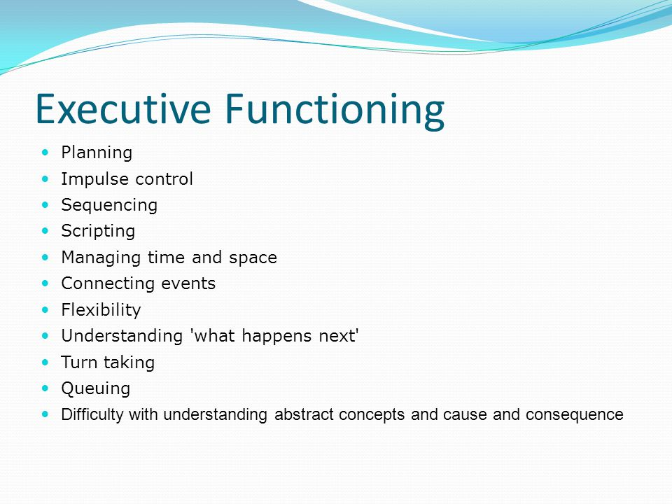Executive Functioning Planning Impulse control Sequencing Scripting Managing time and space Connecting events Flexibility Understanding 'what happens