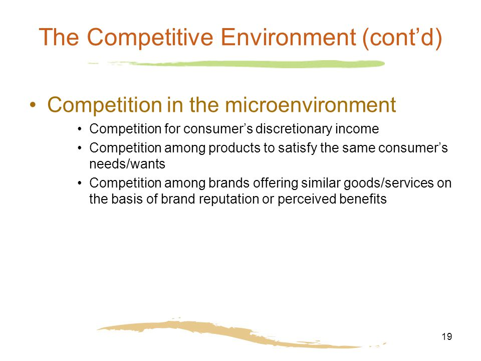 19 The Competitive Environment (cont'd) Competition in the microenvironment Competition for consumer's discretionary income Competition among products