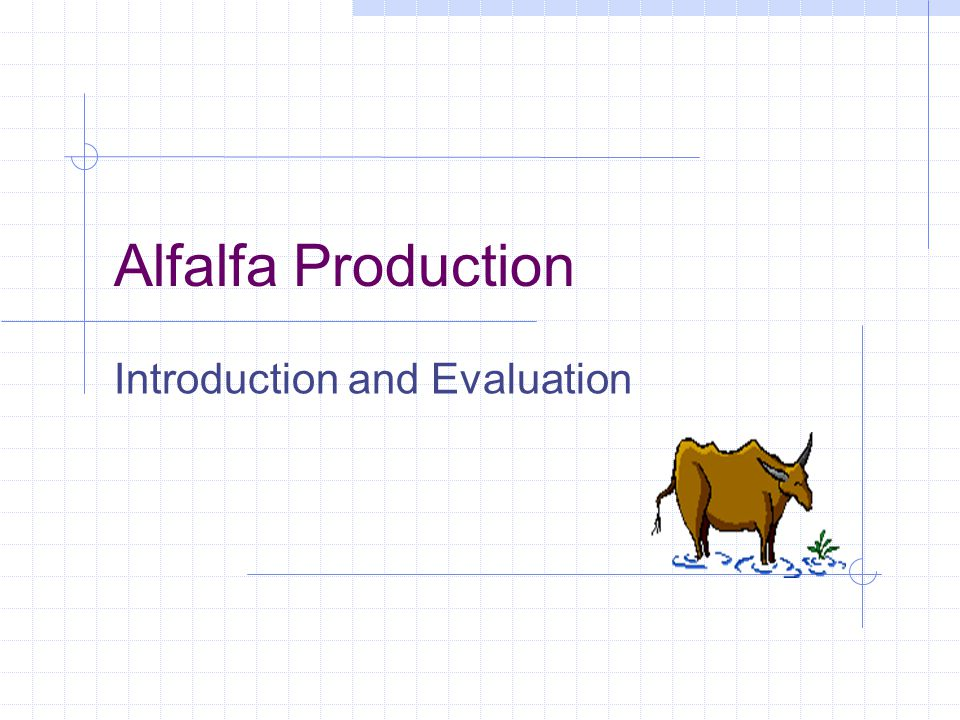 Alfalfa Production Introduction and Evaluation