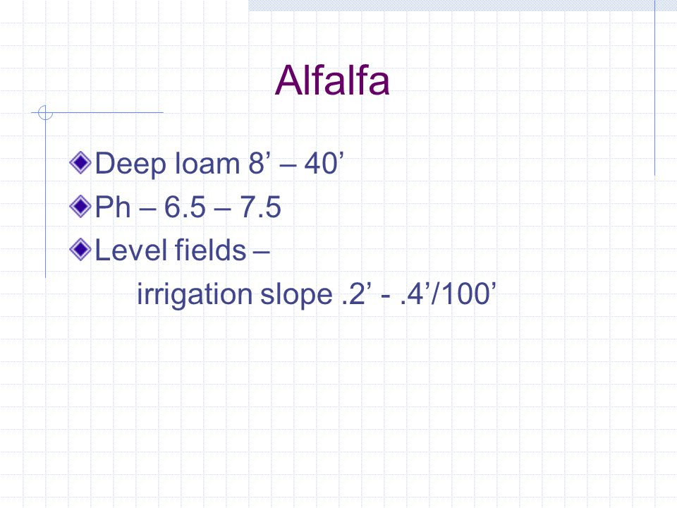 Alfalfa Perennial Deep rooted Needs good soil & Good Drainage Dormant, Semi Dormant, Non-Dormant