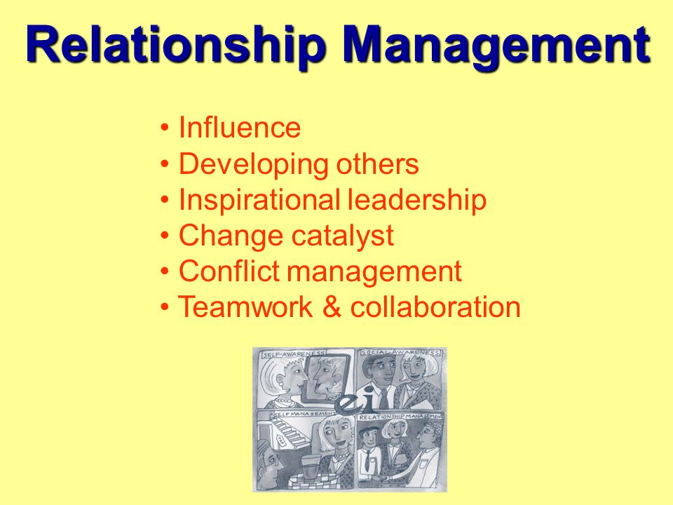 Relationship Management Influence Developing others Inspirational leadership Change catalyst Conflict management Teamwork & collaboration