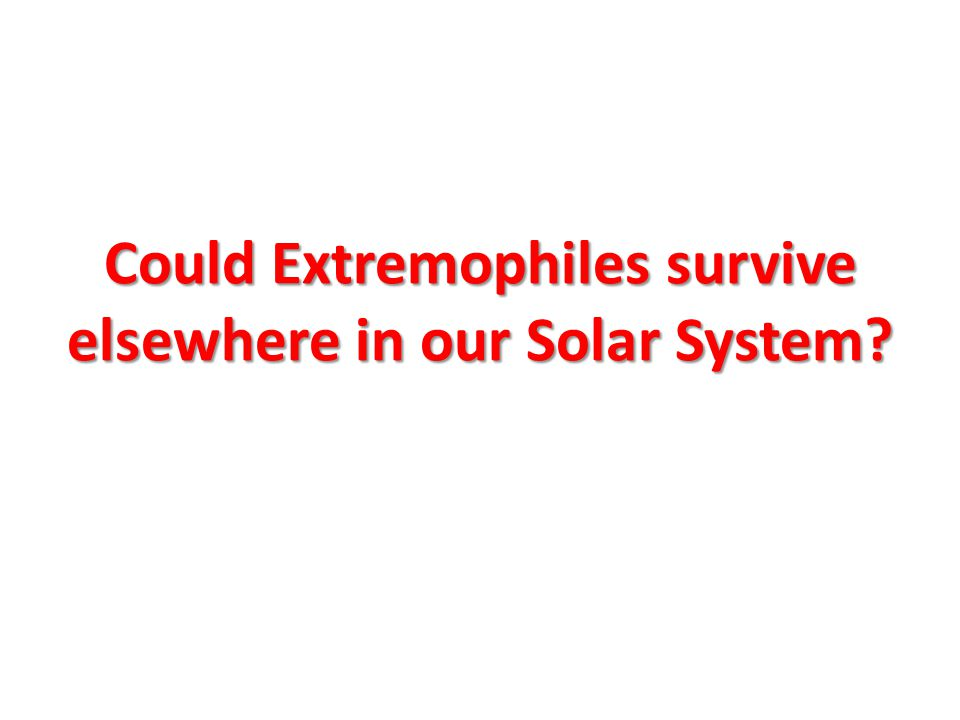 Could Extremophiles survive elsewhere in our Solar System?