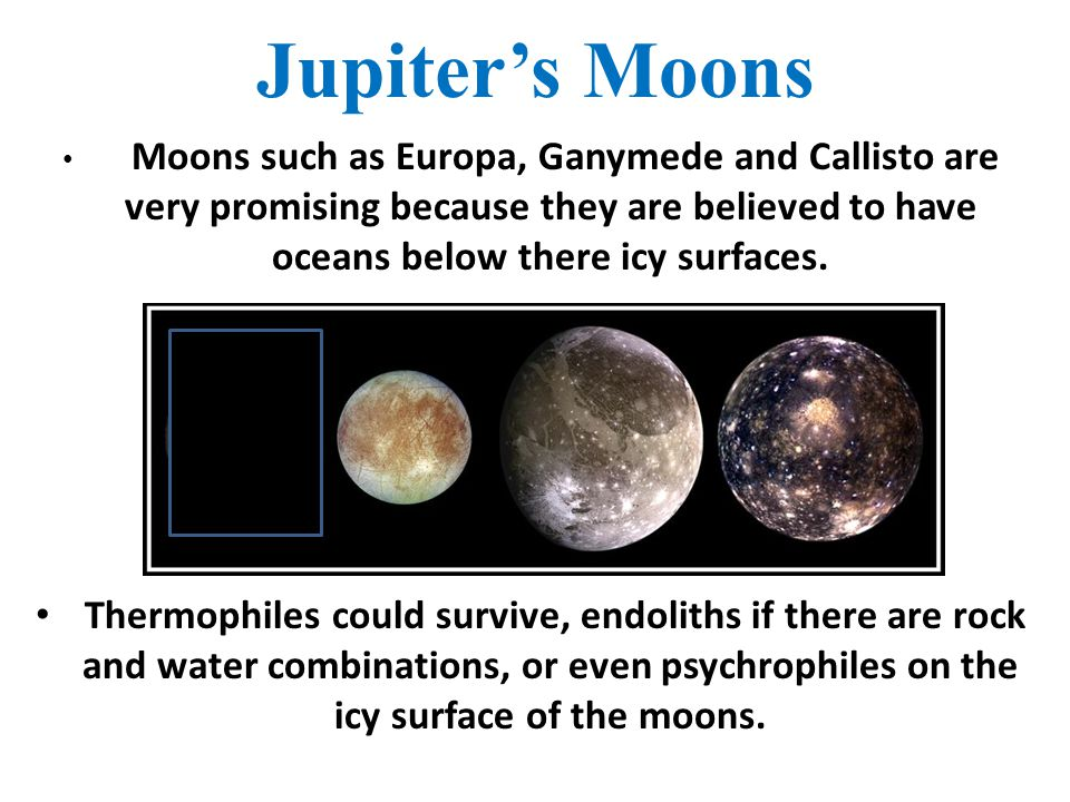 Jupiter's Moons Moons such as Europa, Ganymede and Callisto are very promising because they are believed to have oceans below there icy surfaces. Ther