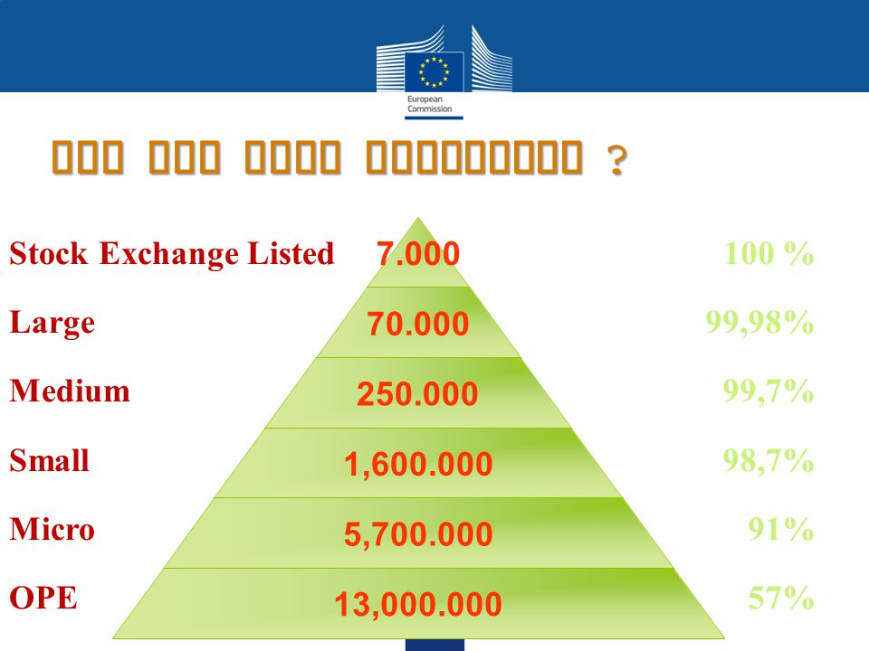 SMEs play a significant role 58% of total turnover = €14.000 billion/a