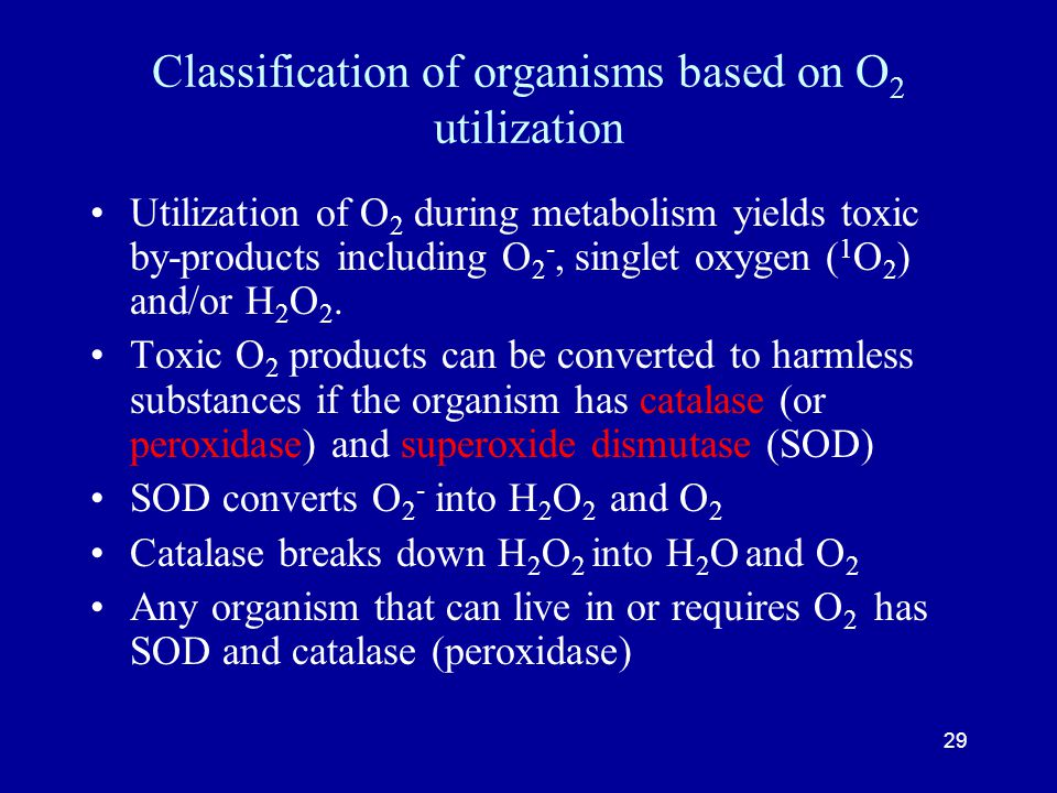 29 Classification of organisms based on O 2 utilization Utilization of O 2 during metabolism yields toxic by-products including O 2 -, singlet oxygen