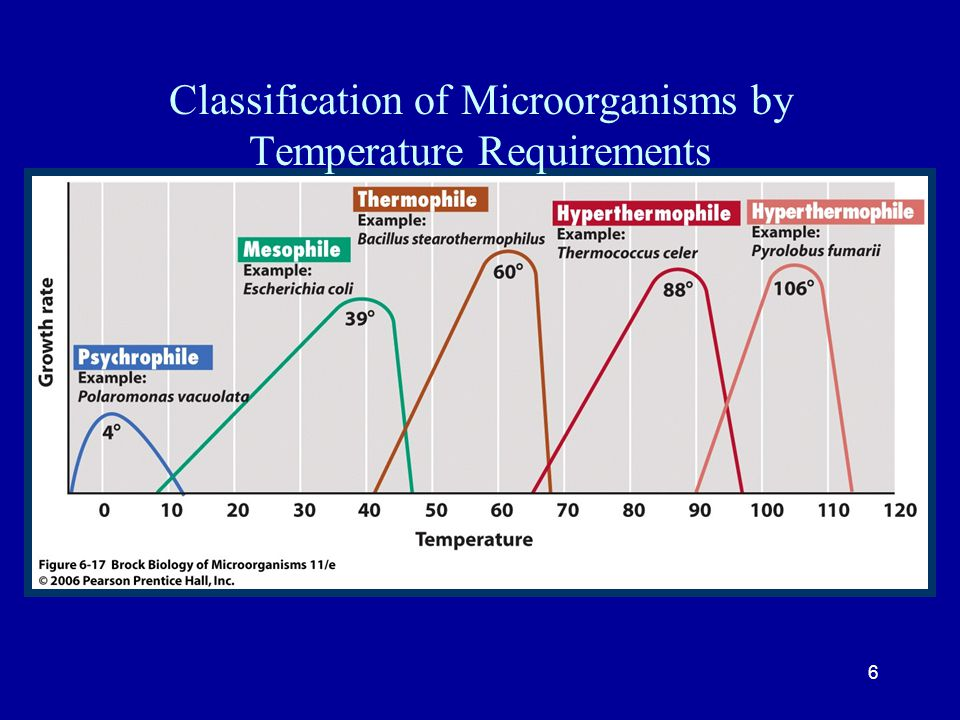 6 Classification of Microorganisms by Temperature Requirements