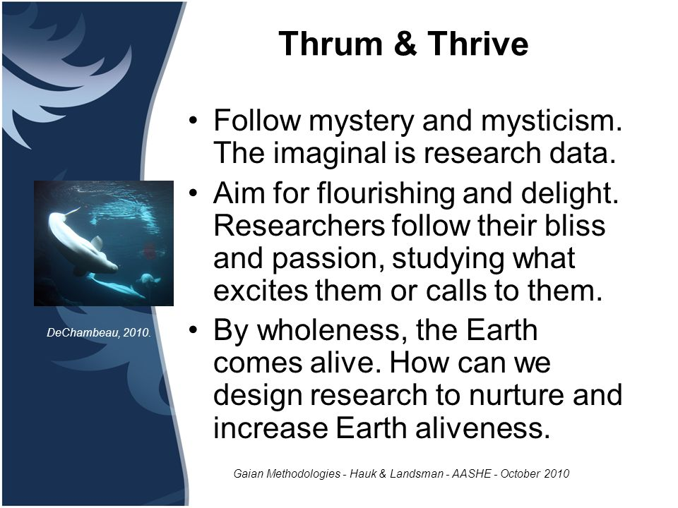 Gaian Methodologies - Hauk & Landsman - AASHE - October 2010 Thrum & Thrive Follow mystery and mysticism.