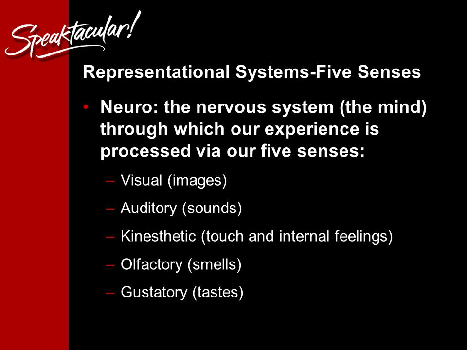 13 Representational Systems-Five Senses Neuro: the nervous system (the mind) through which our experience is processed via our five senses: –Visual (images) –Auditory (sounds) –Kinesthetic (touch and internal feelings) –Olfactory (smells) –Gustatory (tastes)