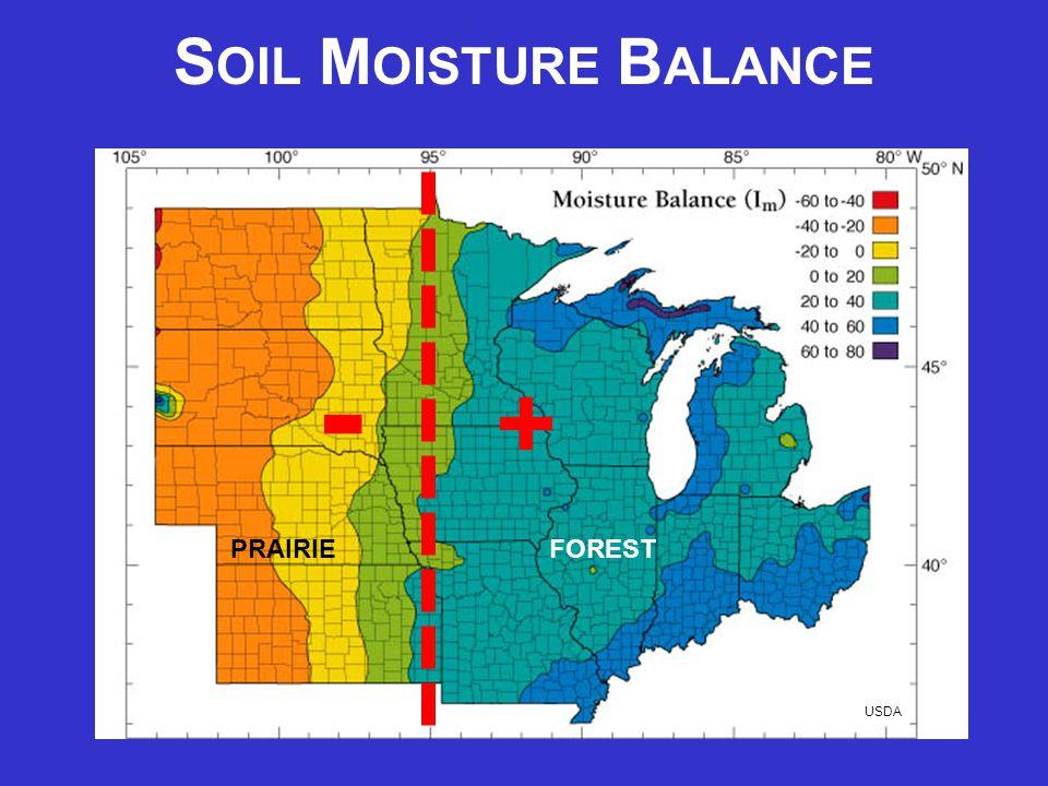 S OIL M OISTURE B ALANCE USDA - + - + PRAIRIE FOREST