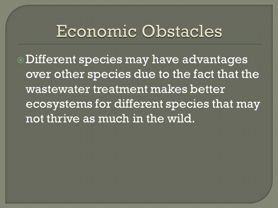  Different species may have advantages over other species due to the fact that the wastewater treatment makes better ecosystems for different species that may not thrive as much in the wild.