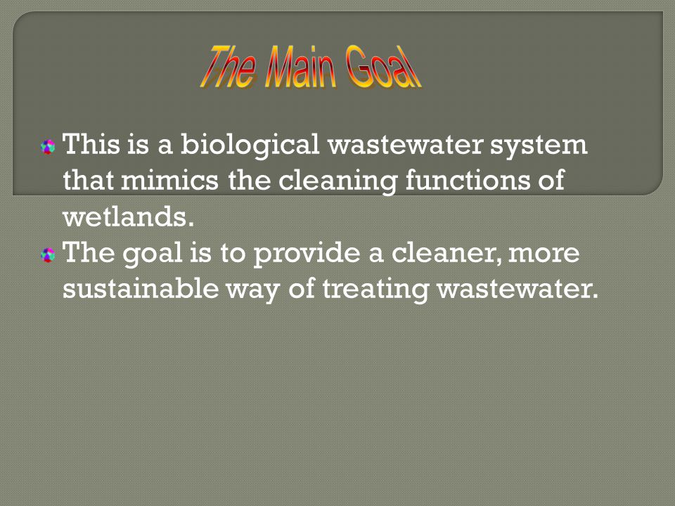 This is a biological wastewater system that mimics the cleaning functions of wetlands.
