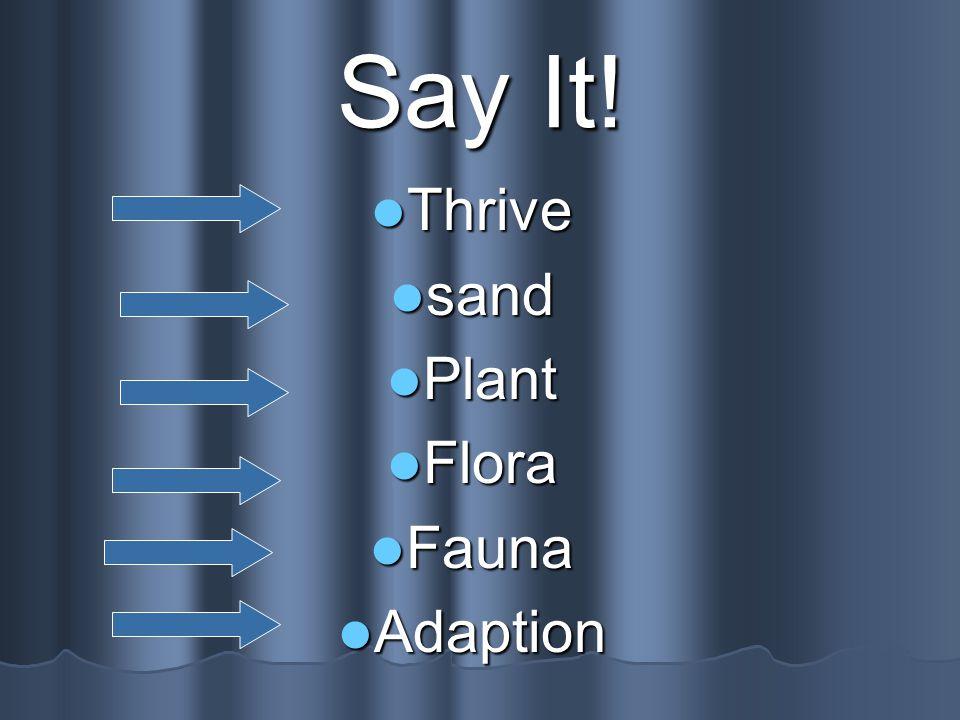 Say It! Thrive Thrive sand sand Plant Plant Flora Flora Fauna Fauna Adaption Adaption