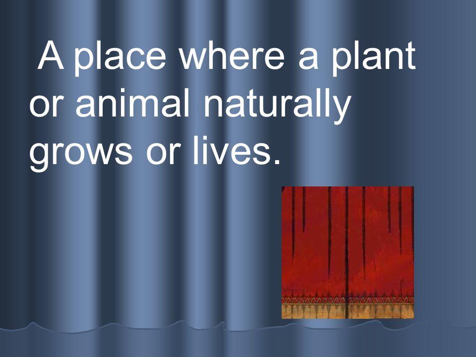 Organism Any living thing.