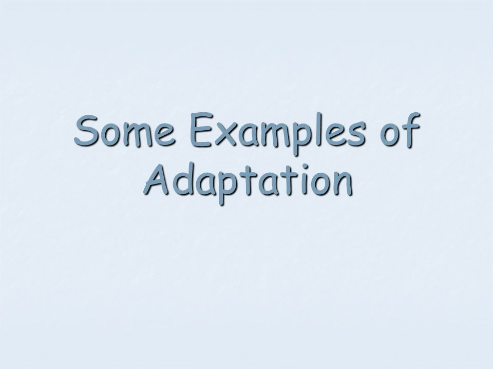 Some Examples of Adaptation