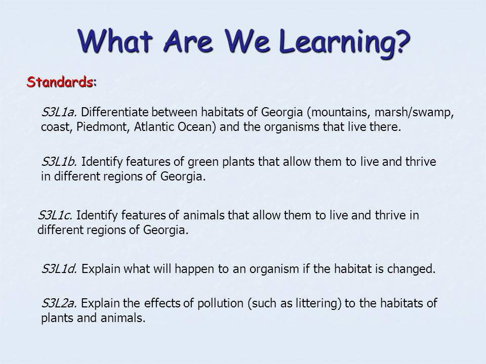 What Are We Learning? Standards: S3L1c. Identify features of animals that allow them to live and thrive in different regions of Georgia. S3L1b. Identi
