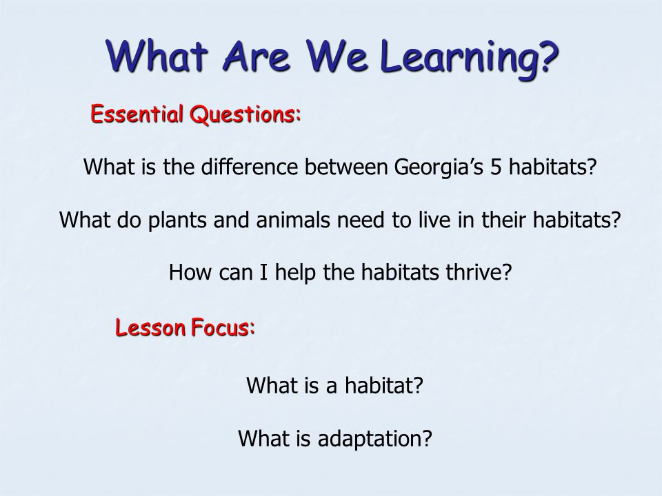 What Are We Learning? Essential Questions: What is the difference between Georgia's 5 habitats? What do plants and animals need to live in their habit