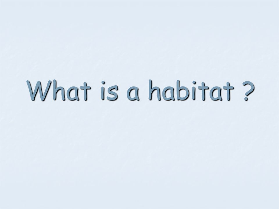 A habitat is the place where living things (organisms) live.