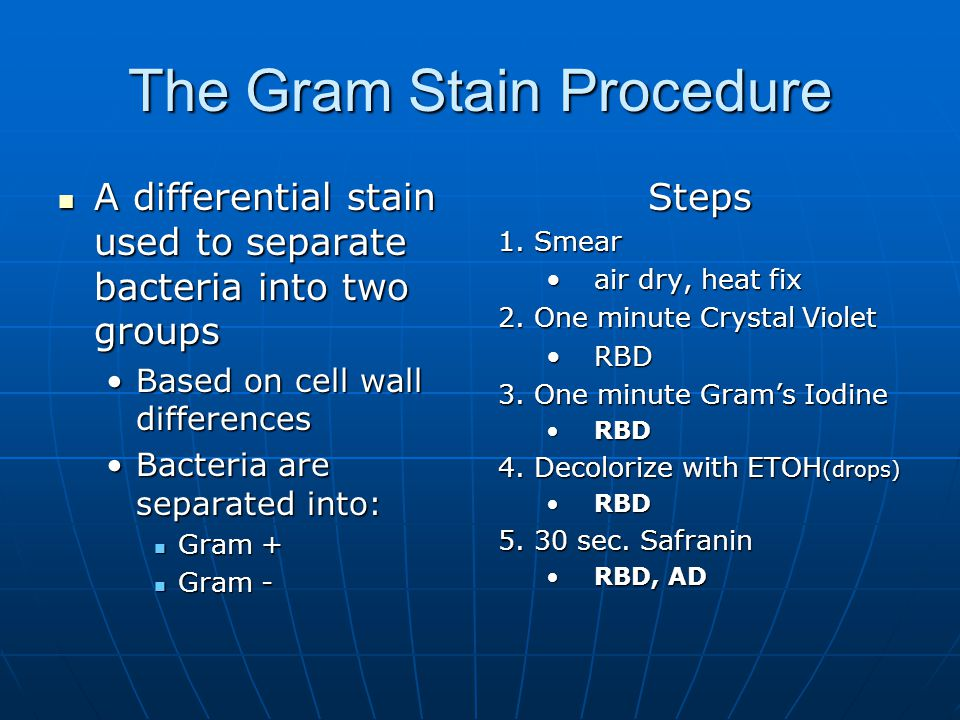 The Gram Stain Procedure A differential stain used to separate bacteria into two groups A differential stain used to separate bacteria into two groups Based on cell wall differencesBased on cell wall differences Bacteria are separated into:Bacteria are separated into: Gram + Gram + Gram - Gram -Steps 1.