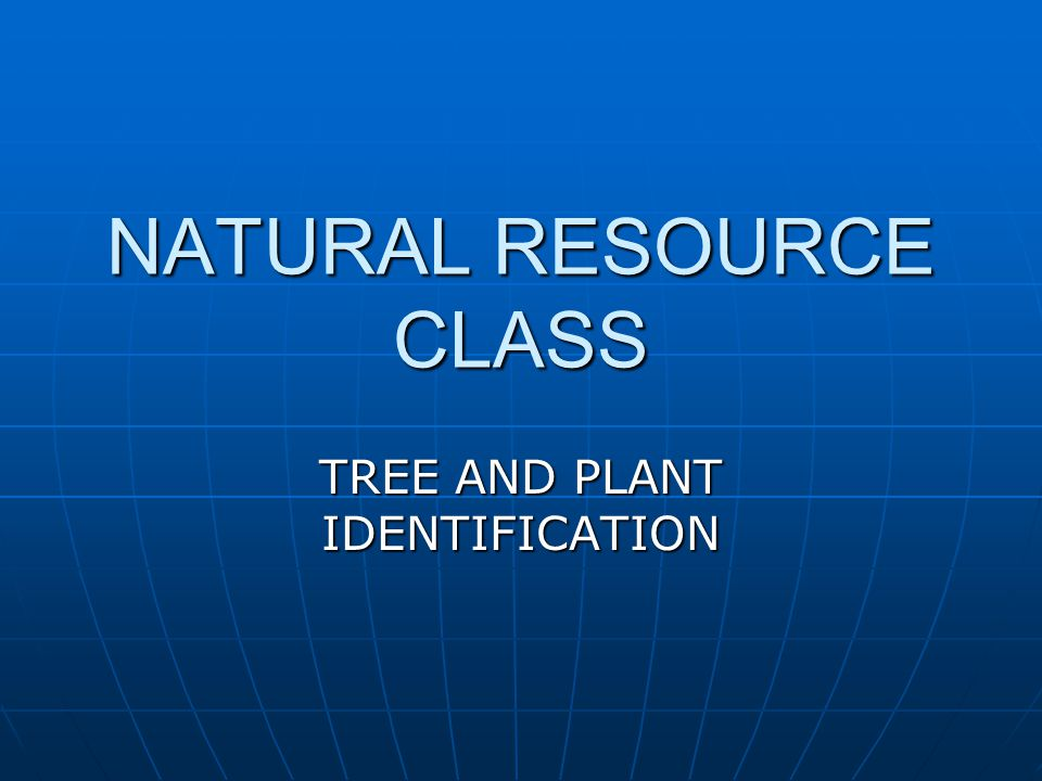 NATURAL RESOURCE CLASS TREE AND PLANT IDENTIFICATION