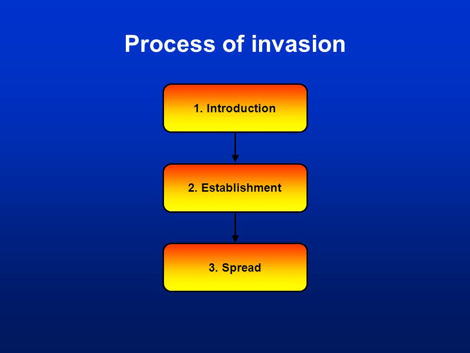 Process of invasion 1. Introduction 2. Establishment 3. Spread