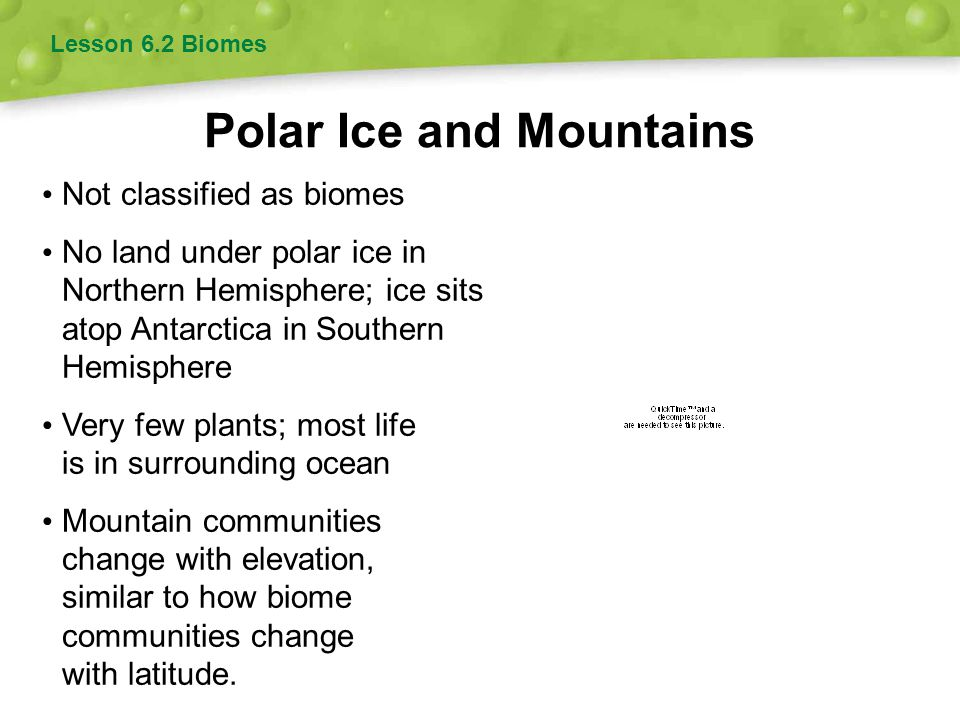 Polar Ice and Mountains Lesson 6.2 Biomes Not classified as biomes No land under polar ice in Northern Hemisphere; ice sits atop Antarctica in Souther
