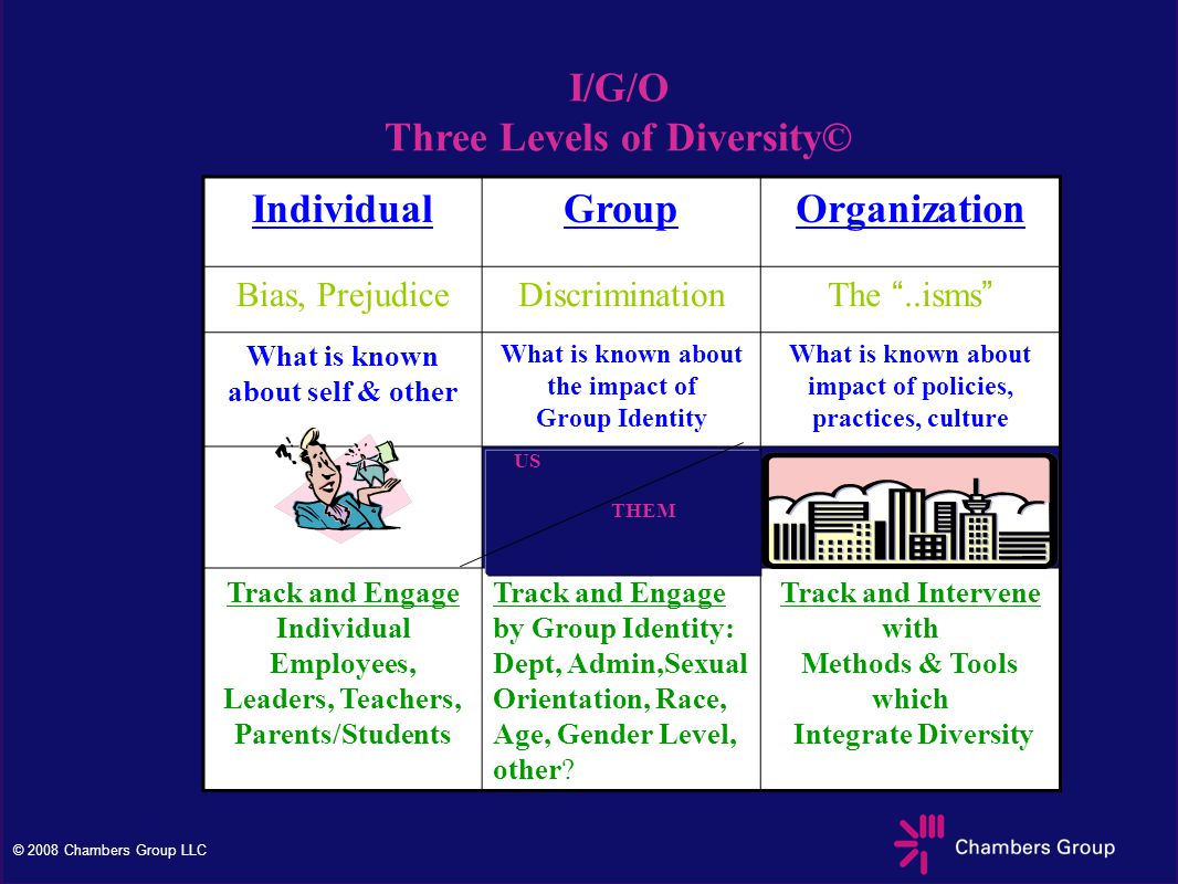© 2008 Chambers Group LLC I/G/O Three Levels of Diversity© IndividualGroupOrganization Bias, PrejudiceDiscrimination The ..isms What is known about self & other What is known about the impact of Group Identity What is known about impact of policies, practices, culture Track and Engage Individual Employees, Leaders, Teachers, Parents/Students Track and Engage by Group Identity: Dept, Admin,Sexual Orientation, Race, Age, Gender Level, other.