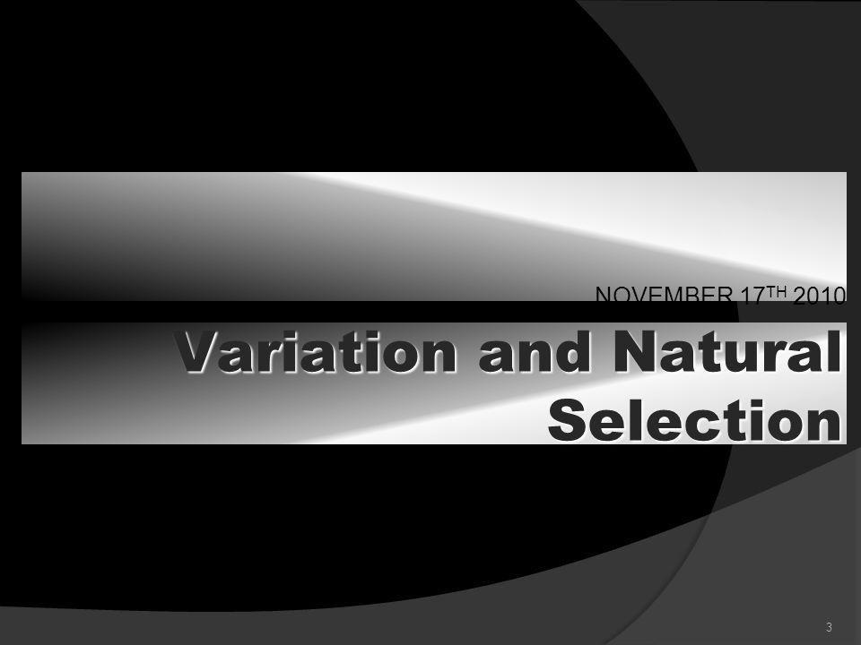 4 Variation Trait: a distinguishing characteristic or quality, esp.