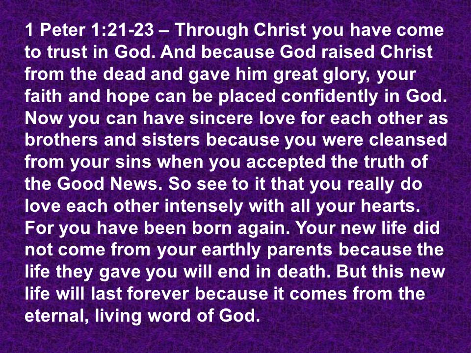 See your life the way God sees you (Living Stone, Holy Priest).