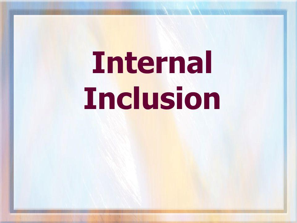 Internal Inclusion