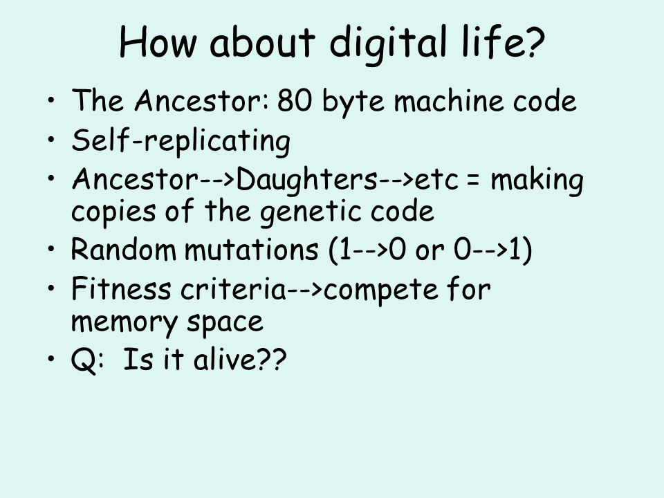How about digital life.