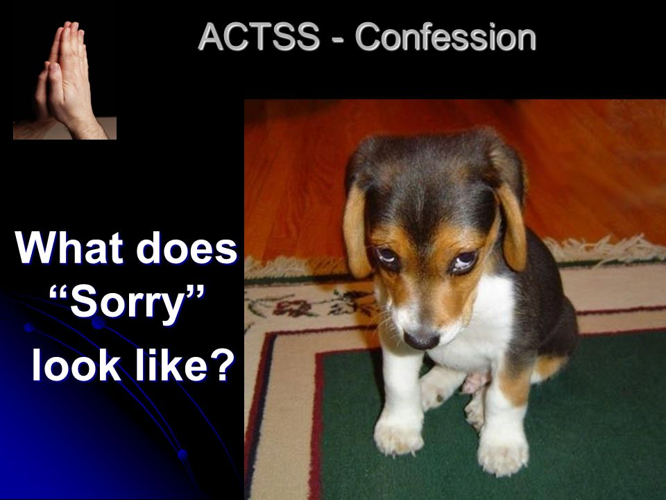 ACTSS - Confession What does Sorry look like look like