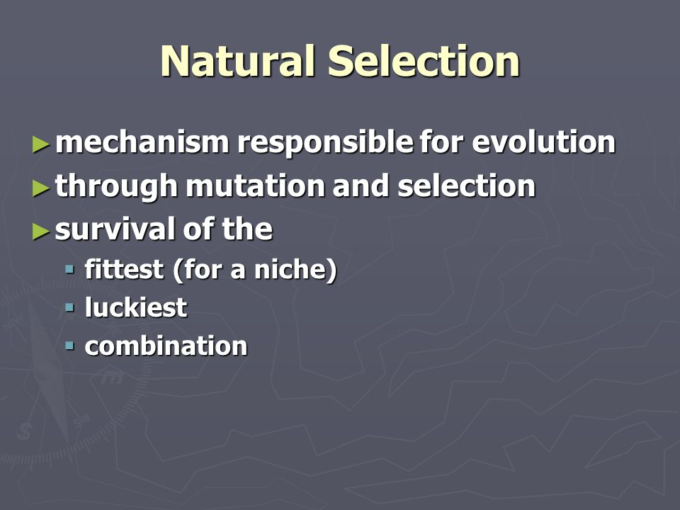 Scientific Explanations ► must be natural ► must be supported by available data ► must be testable & falsifiable ► subject to revision or refinement or negation ► should be predictive ► OE and NS meet all of these requirements