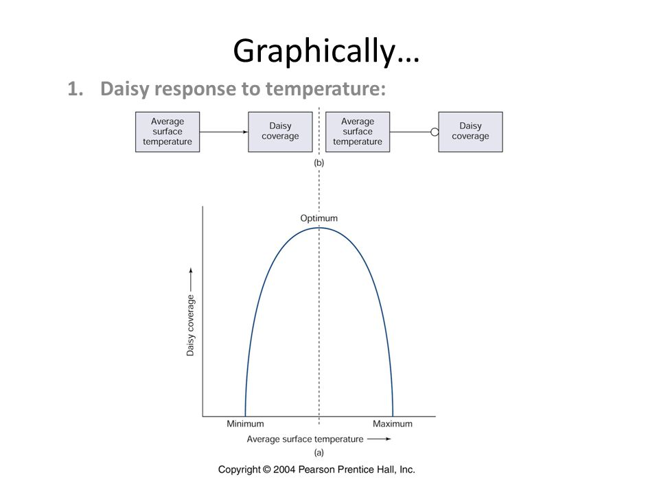 Graphically… 1.Daisy response to temperature: