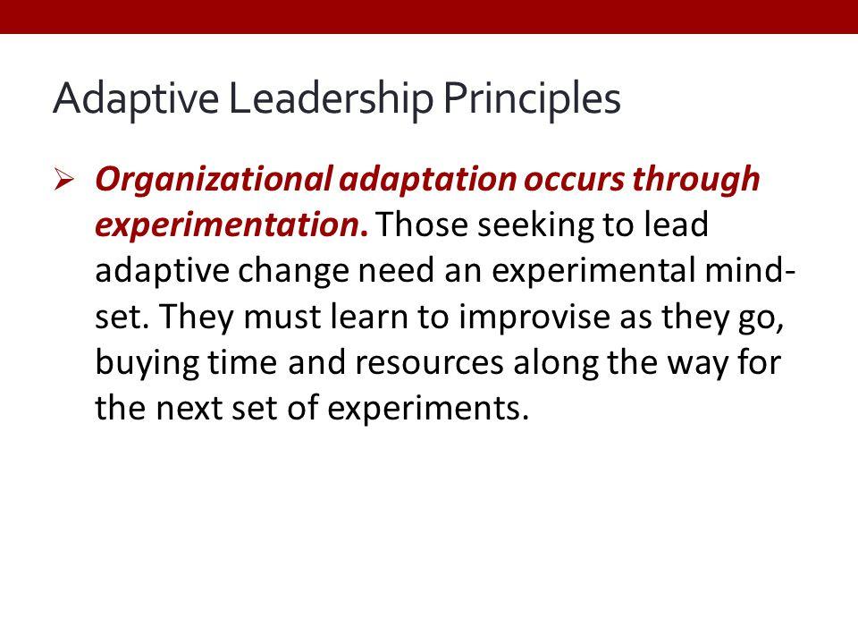 Adaptive Leadership Principles  Organizational adaptation occurs through experimentation.