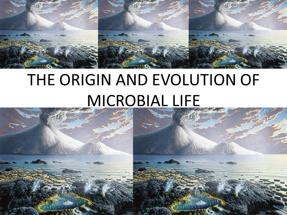 THE ORIGIN AND EVOLUTION OF MICROBIAL LIFE