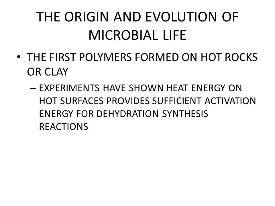 THE ORIGIN AND EVOLUTION OF MICROBIAL LIFE THE FIRST POLYMERS FORMED ON HOT ROCKS OR CLAY – EXPERIMENTS HAVE SHOWN HEAT ENERGY ON HOT SURFACES PROVIDES SUFFICIENT ACTIVATION ENERGY FOR DEHYDRATION SYNTHESIS REACTIONS