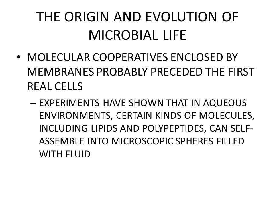 THE ORIGIN AND EVOLUTION OF MICROBIAL LIFE MULTICELLULAR LIFE MAY HAVE EVOLVED FROM COLONIAL PROTISTS