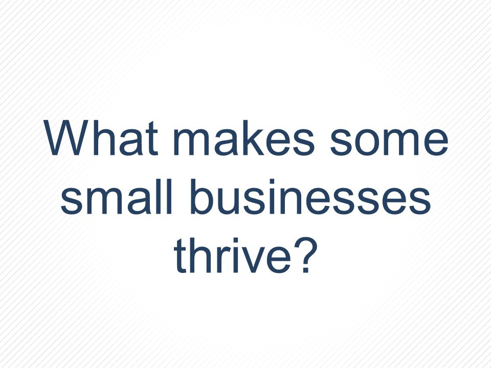 What makes some small businesses thrive?